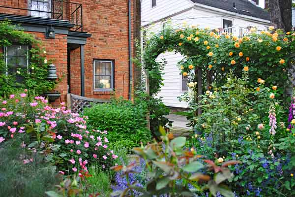 cottage garden with rainbow knock out roses after reader remodel contest 2013