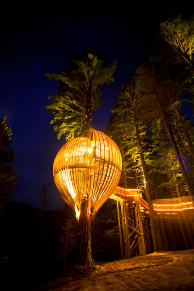 redwoods treehouse event space in new zealand