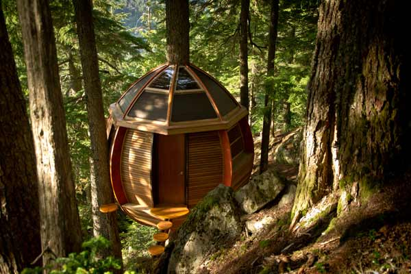 hemloft treehouse in forest