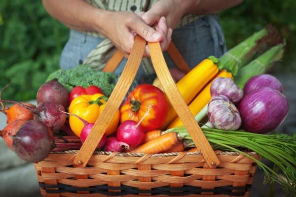basketful of fresh fruit from garden