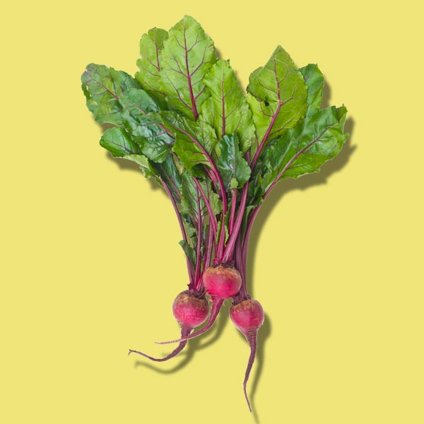 beets, nutrient boosting vegetables to plant for fall