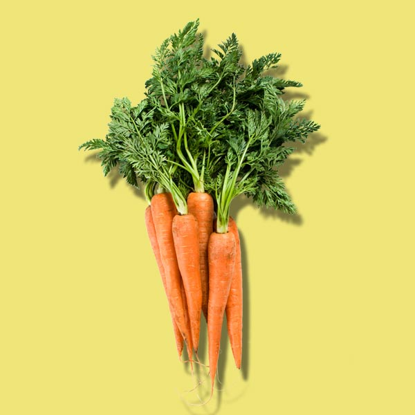 carrots, nutrient boosting vegetables to plant for fall