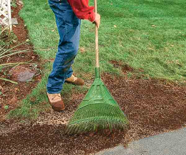 reseeding bare patches on lawn, april fast fixes