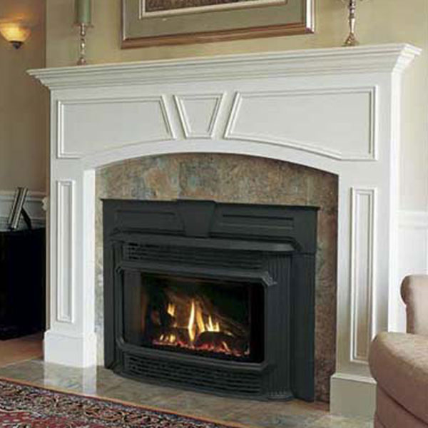 18 House Enclosed Gas Fireplace Insert How The Pros