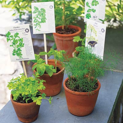 Chopsticks used to label plants, best of 10 uses for common kitchen items