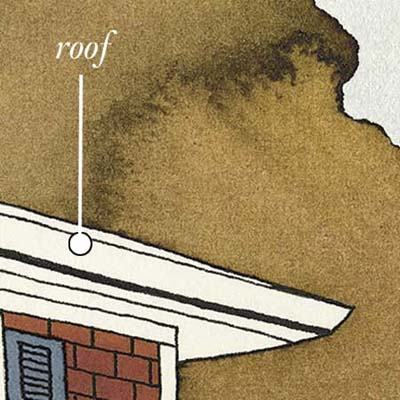roof design and materials should vary depending on the region