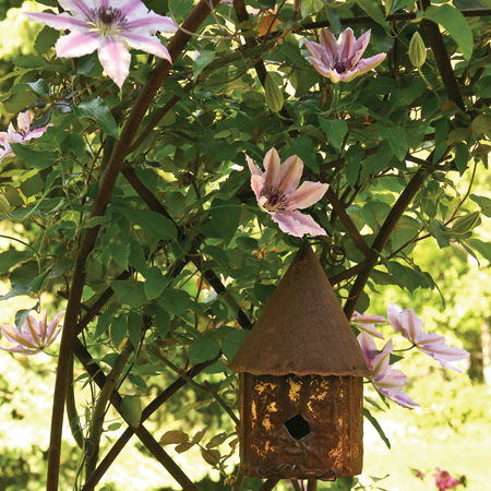 birdhouse on a curved iro trellis with 'Nelly Moser' clematis vine