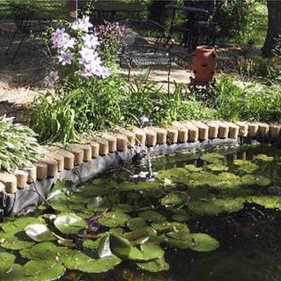 before photo of a back yard in Weeki Wachee, FL with a waterlily-covered pond