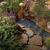 landscape your pond with plants