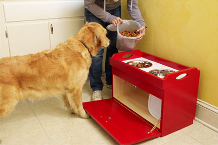 woman putting pet food in the pet feeding station while a dog watches intently