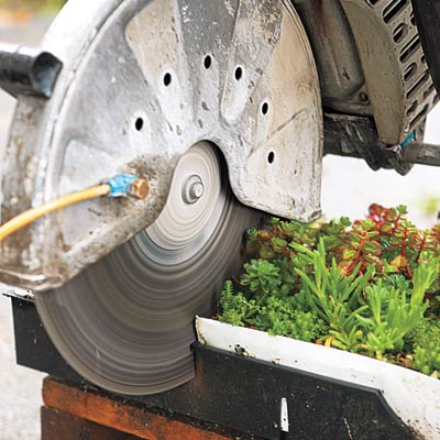cutting planted trays with a gas-powered concrete saw