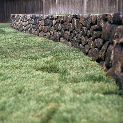 lawn and retaining wall