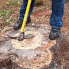chopping a tree stump 