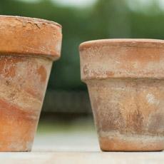 rustic looking terra cotta planting pots