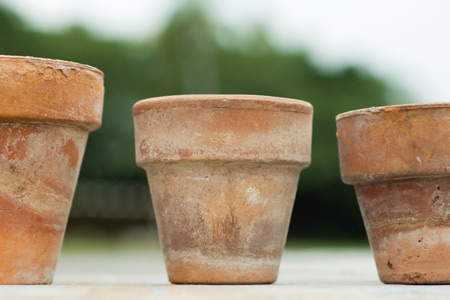 rustic looking terra cotta planting pots
