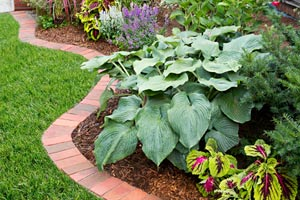 brick paver edging for garden bed