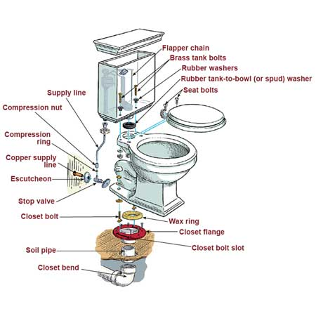 anatomy of a toilet illustration
