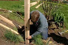 Roger Cook shows how to repair a split-rail fence