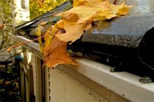 Tom Silva chooses a leaf-proof gutter