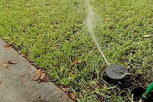 low-cost sprinker