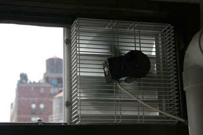 Schaefer Ventilation Equipment in studio kitchen